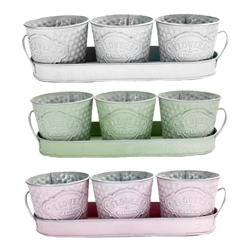 3 Pots with Tray