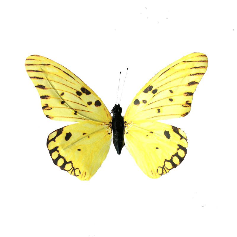 Paper Butterfly S/3 Yellow