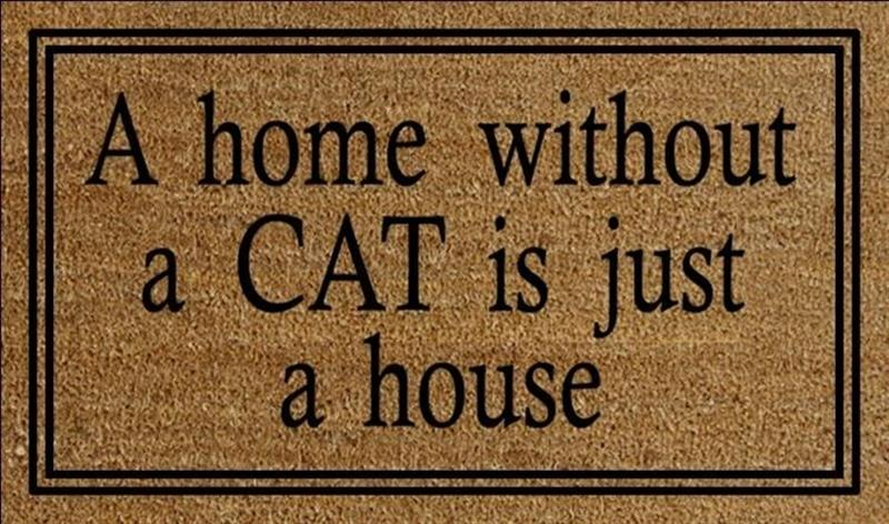 Home Without A Cat Doormat