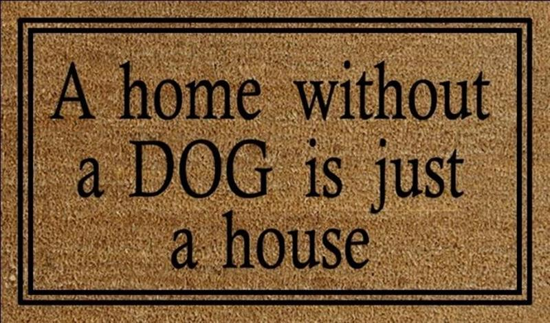 Home Without A Dog Doormat