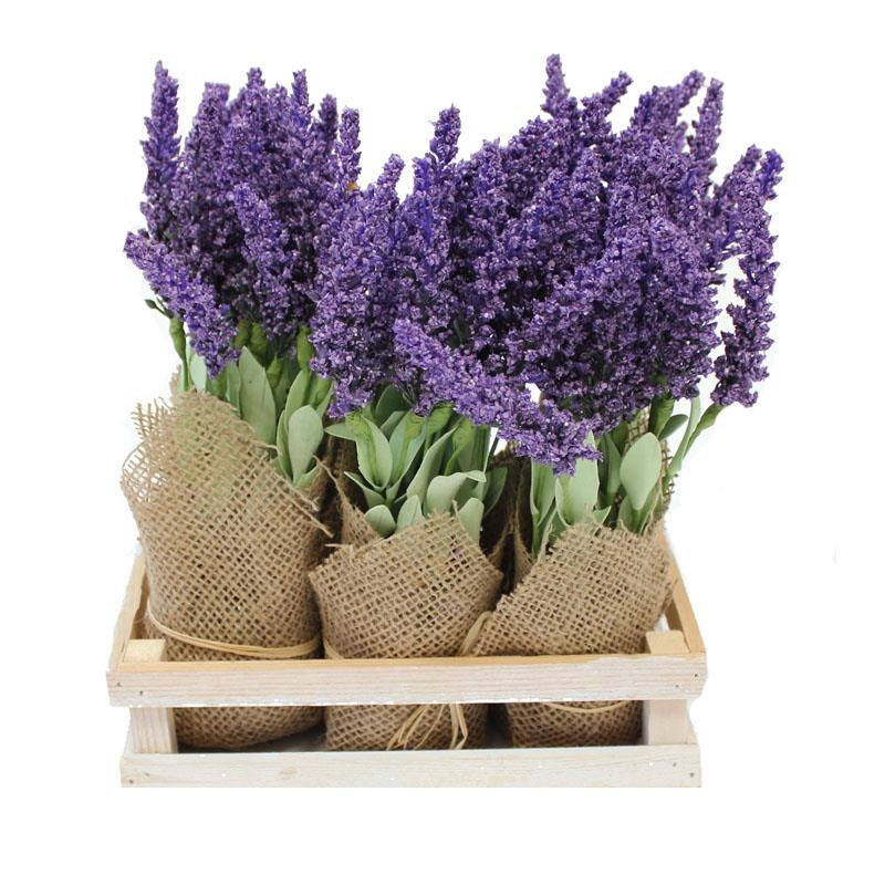 Lavender Flowers With Crate