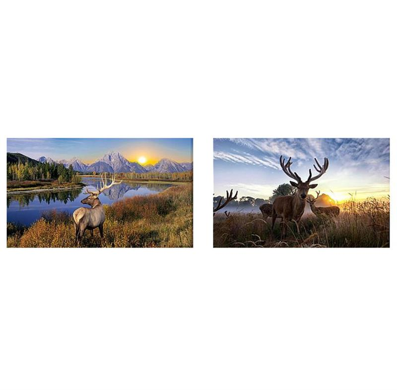 LED Wild Deer Canvas 2 Asst