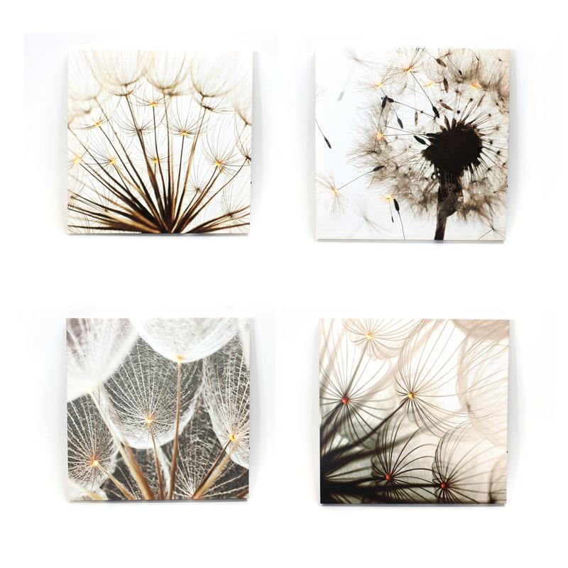 Dandelion Canvas 4 Assorted